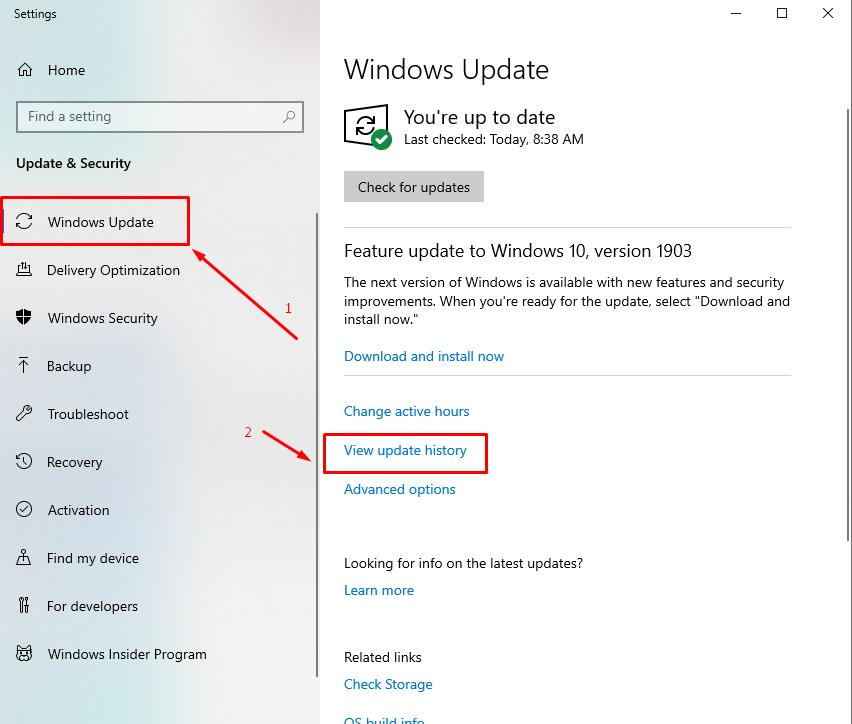 OPen Windows Update section and click View update history